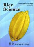 水稻科学(英文版)
