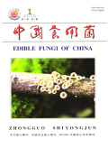 中国食用菌